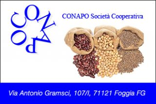 Conapo soc. cooperativa_330x220_nz