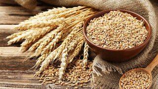 cereali-grano